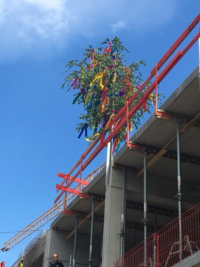 Der obligatorische Baum